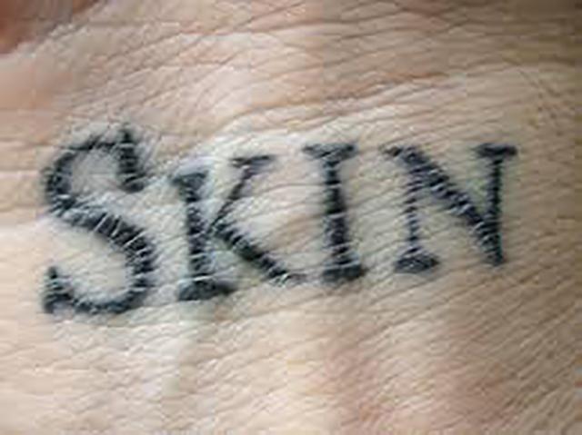 vkatz skin