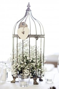 bird-cage-200×300
